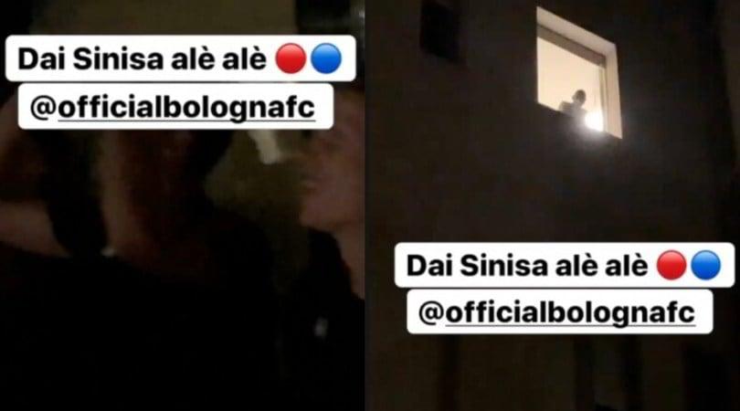 Il Bologna va da Mihajlovic