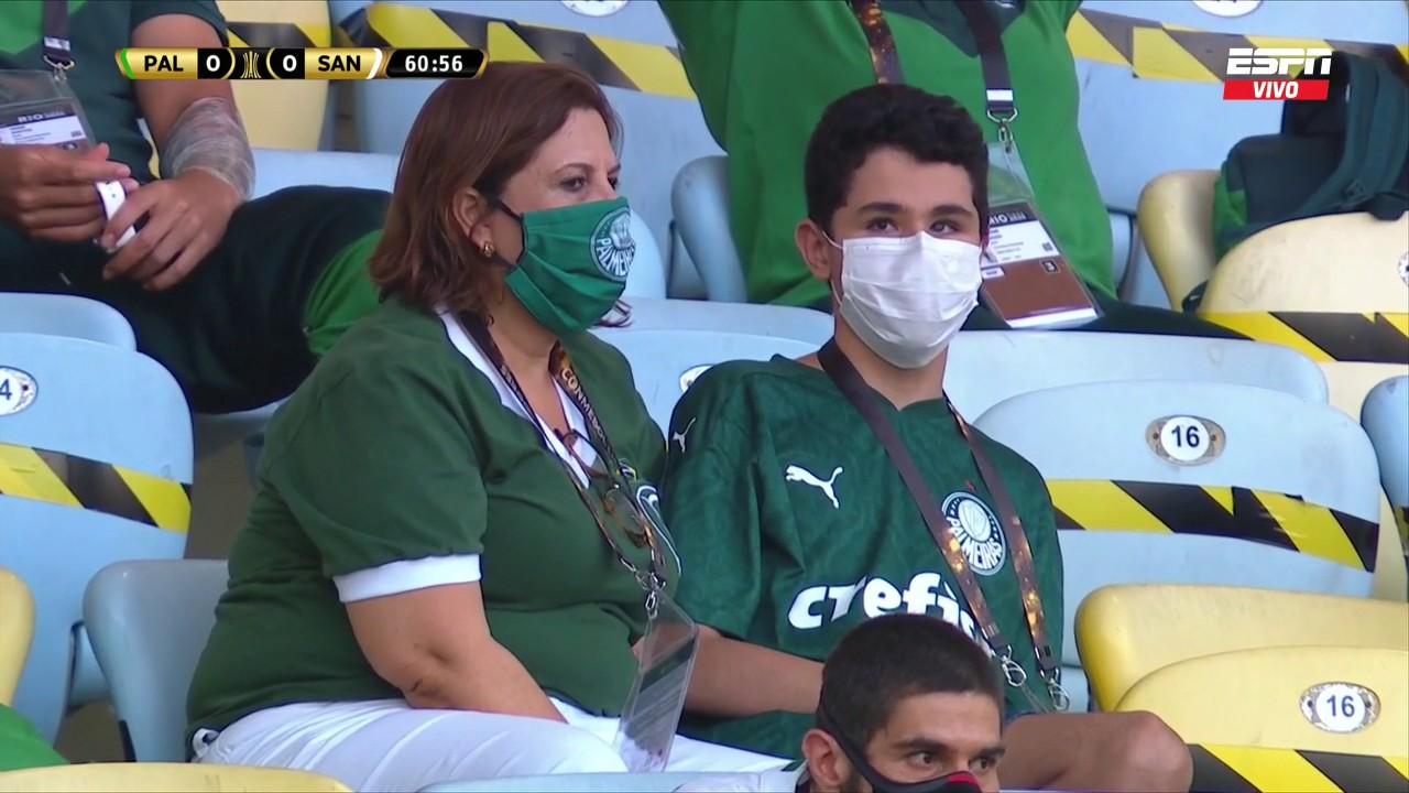 Palmeiras mamma figlio cieco